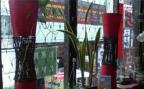 上野占いサイコー館